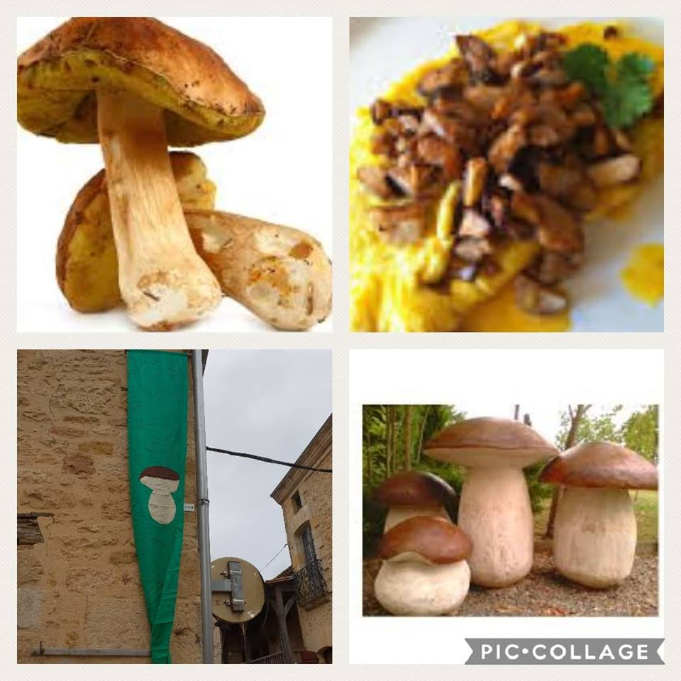 Collage of Cepes