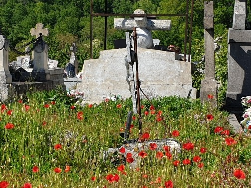 Poppies in the grave yard 2