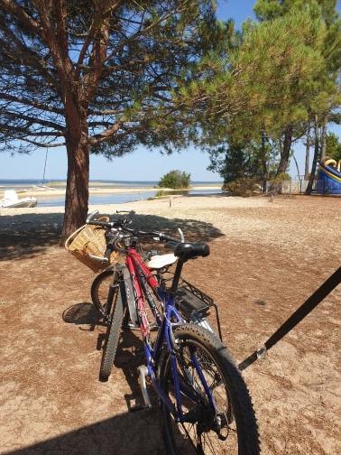 Bikes at Biscarrosse